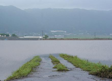 洪水によって水没した道路。