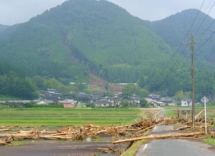 流れてきた流木が道を塞いでいる。