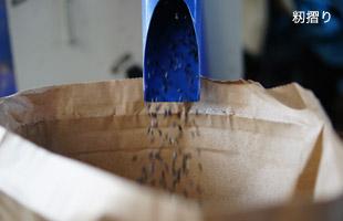 籾摺りの様子。
