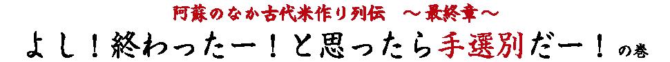 阿蘇のなか古代米作り列伝最終章。よし!終わった!と思ったら手選別だー!の巻。