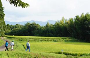 田んぼへ向かって歩く藤原さん夫婦と北野悦之さん。