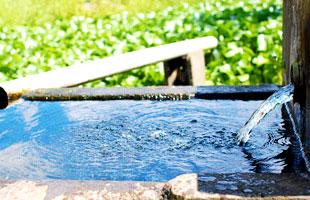 田んぼに使用している湧水。