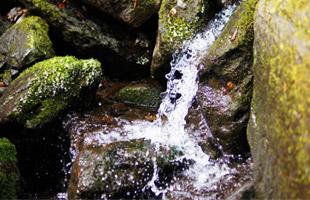 勢い良く流れ出る岩清水。