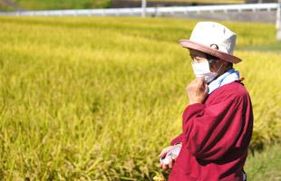 田んぼを見つめる後藤松子さん。