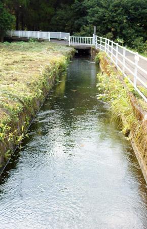 地下水の通る用水路。