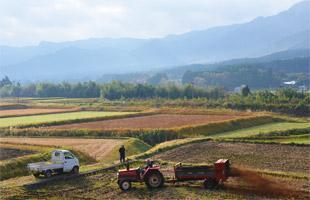 阿蘇山をバックに肥料を散布する。