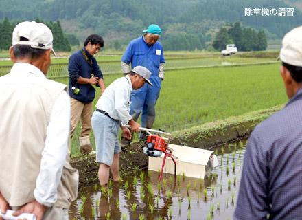 喜多無農薬生産会のメンバーたちに除草機の講習を行う北野さん。