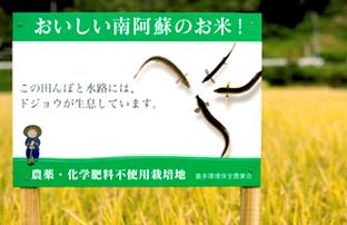 北野さんの田んぼにある、ドジョウの生息を示す看板。