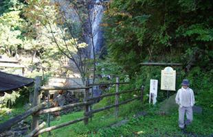 金龍の滝を見る高島さん。