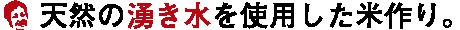 天然の湧水を使用した米作り。