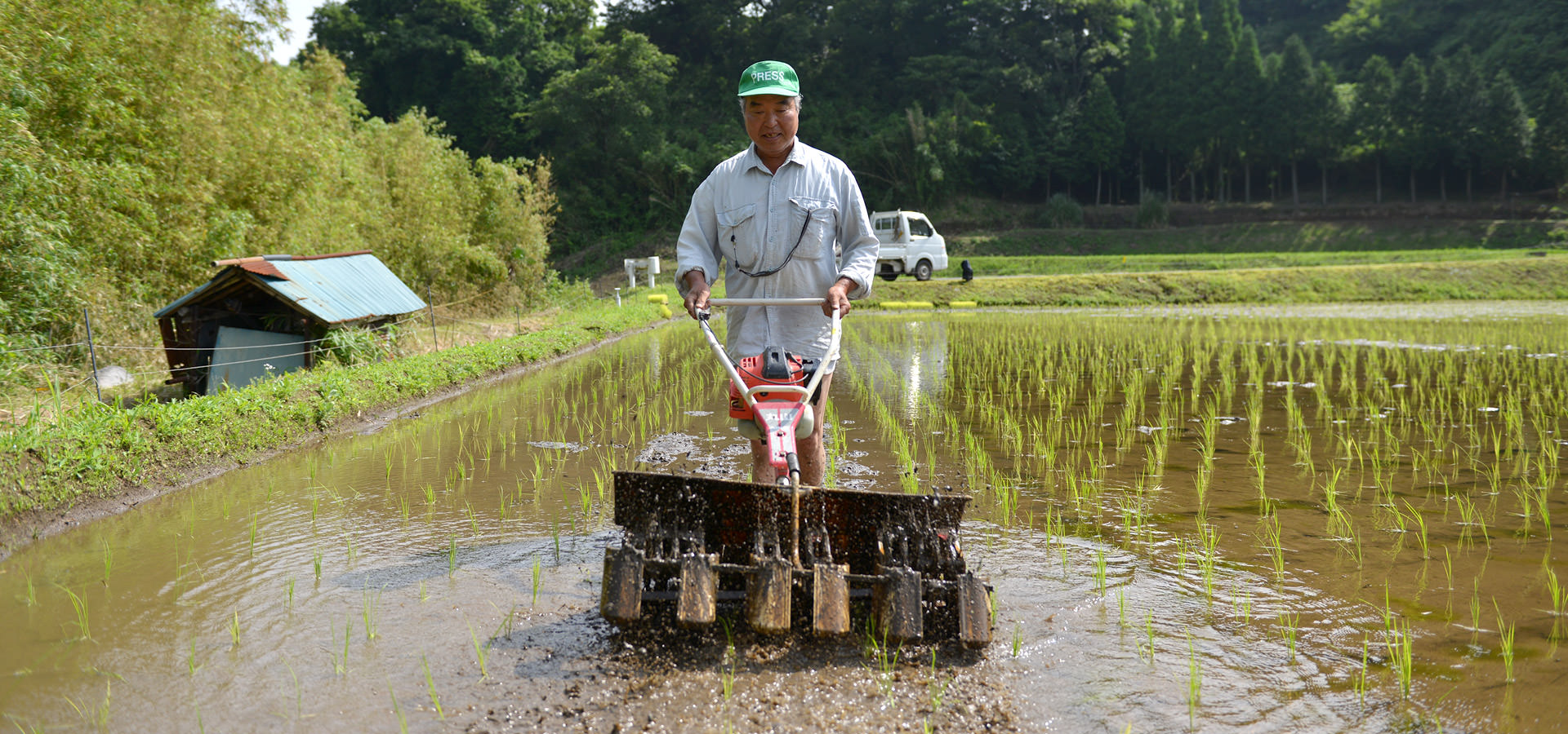 北野悦之さんが作る、無農薬・無化学肥料栽培のお米。