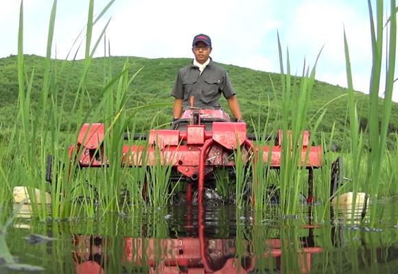田植えが終わったらできるだけ早く除草機を入れる。今年導入した除草機は株間も除草できる優れものだ。しかし入れる時期が少し遅かった&水がこない時期があったせいでヒエが結構生えてしまった。