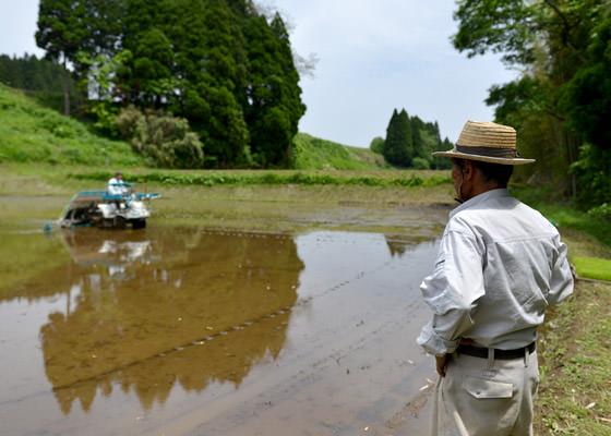 浩二さんの田植えを心配そうに見つめる藤原勝義さん。途中、「あれ、俺よか上手だな〜」喜んでいるような、悲しんでるような。