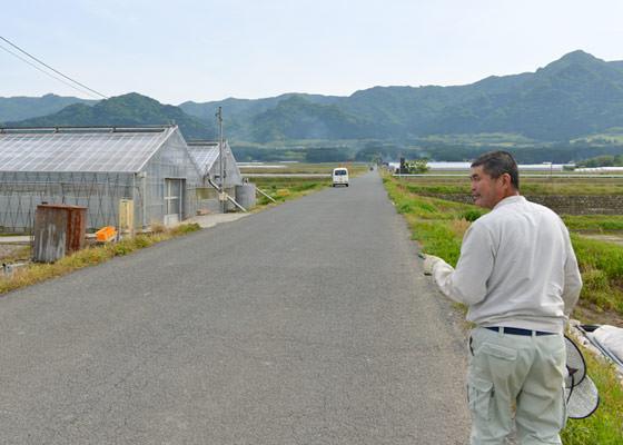 苗の見学ついでにトマトとアスパラガスを見学させてもらった。それらの農産物を育てる屋根型のハウスの値段を聞いてビックリ!