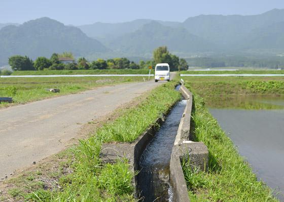 山麓のほうから絶えず水が流れてくる。除草剤を使わない米作りは水の安定供給が必要不可欠だが、ここはその心配はなさそうだ。
