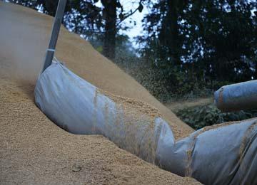 摺摺られた籾はライスセンター裏へ排出される。籾殻は発酵させたり燻炭したりして田や畑の肥料として使用される。