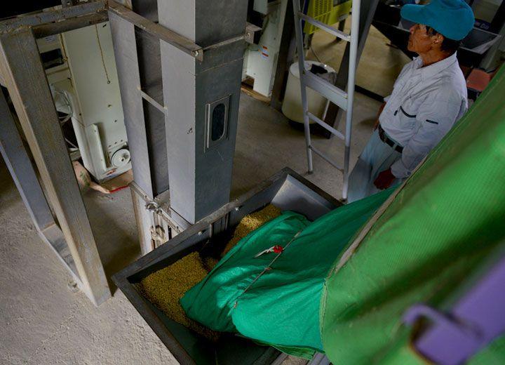 ライスセンターに到着した籾はすぐに無農薬栽培米専用の乾燥機へ投入される。