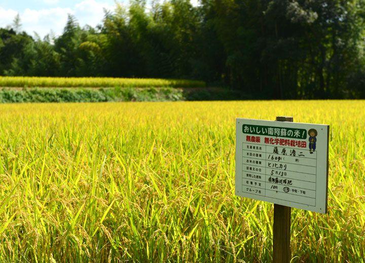 無農薬・無化学肥料栽培を示す看板。生産者名は息子の浩二さんの名前になっている。