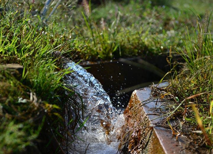 コシヒカリの圃場に流れ込む水は、地下からボーリングして吸い上げる阿蘇外輪山系の天然水だ。もちろん生活排水などは一切入り込まない。