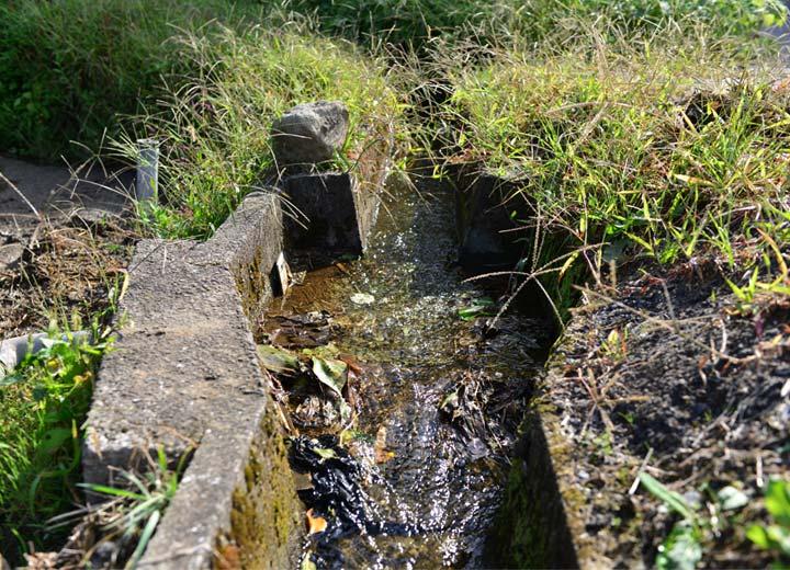北野さんが作る数枚の田んぼの農業用水はいずれも新鮮な湧水。生活排水は一切入らない。