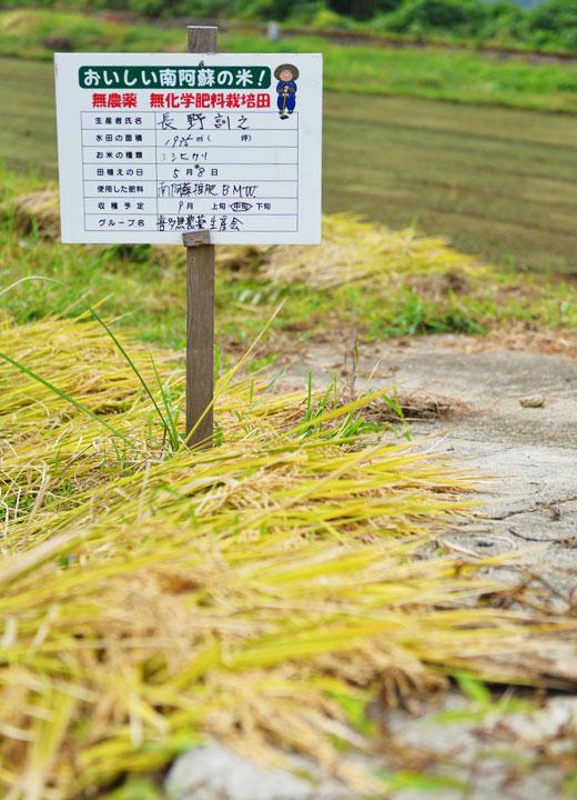 無農薬・無化学肥料栽培を示す看板。喜多無農薬米生産会のメンバーの田んぼには必ず設置されている。