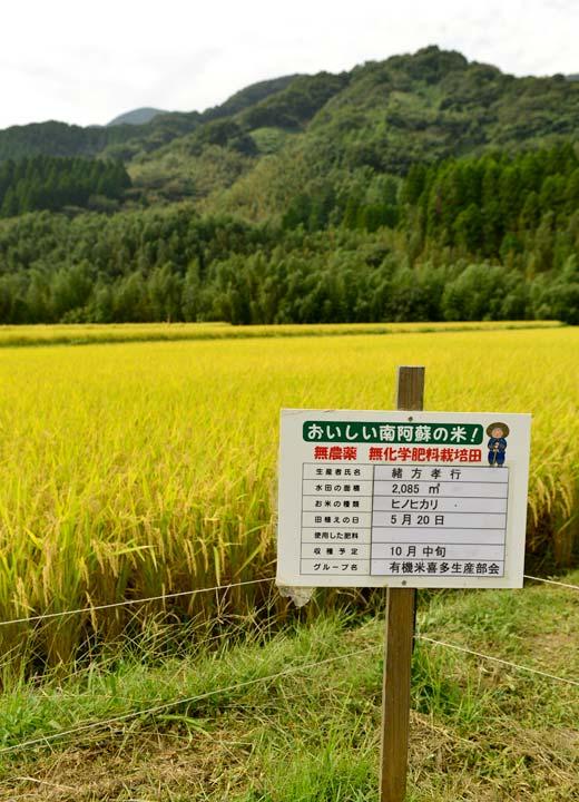 喜多無農薬米生産会では、田に無農薬・無化学肥料栽培を示す看板を立てる。肥料の欄が空白なのは使用していないため。