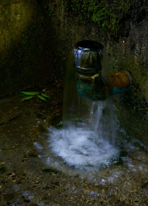 水源から湧き出る阿蘇の天然水。酒井さんの田んぼで使用している用水はこの水だ。