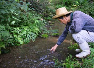 宇都宮さんの棚田の水源は、田からほんの20mほどの距離にある。その間には民家も他の田も一切ない。